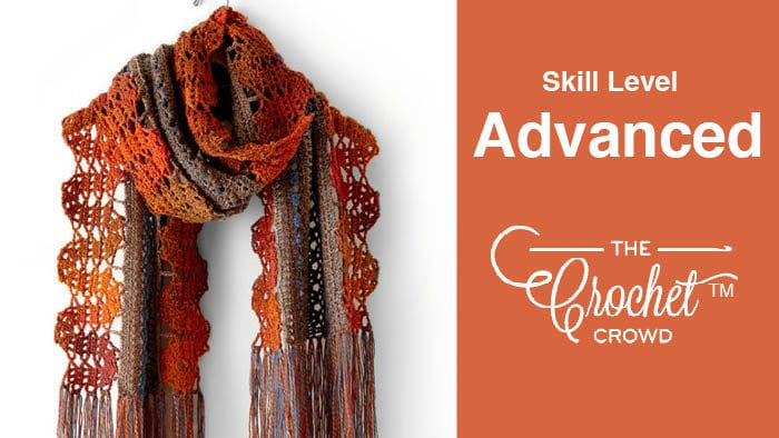 Crochet Advanced Level Projects