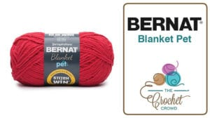 Bernat Blanket Pet Yarn