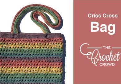 Crochet Criss Cross Bag