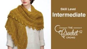 Crochet Intermediate Level Projects