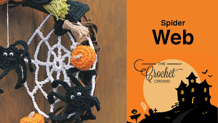 Crochet Spider Web