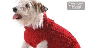 Crochet Dog Coat