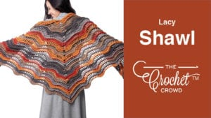 Crochet Lacy Shawl