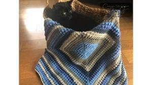 Extra Lemon Square Blanket by Jeanne Steinhilber