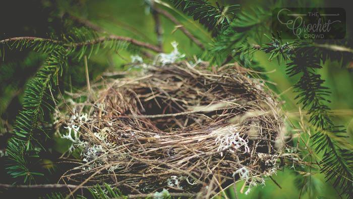Yarn Bird Nests