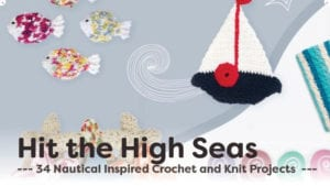 Hit The High Seas Project Ideas