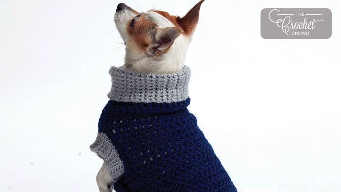 Crochet Dog Coat Heat Wave
