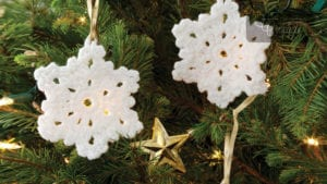 Crochet Best Snowflake