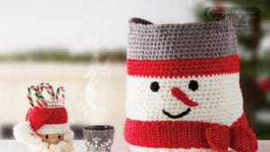 Crochet & Knit for the Party Organizer