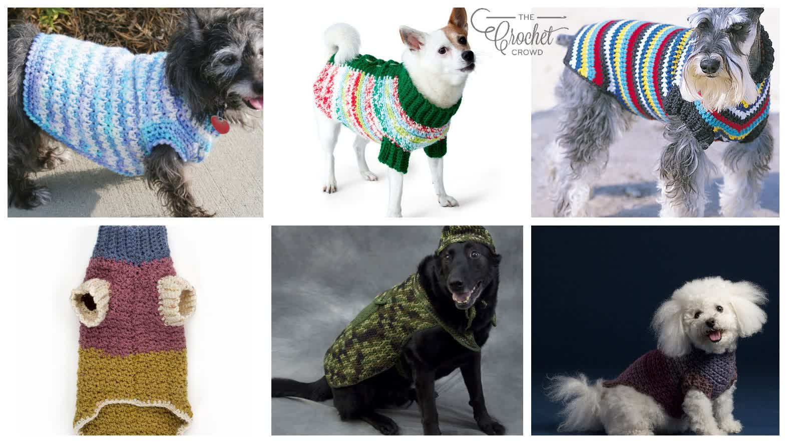 6 Crochet 'Pet'acular Patterns for Dogs