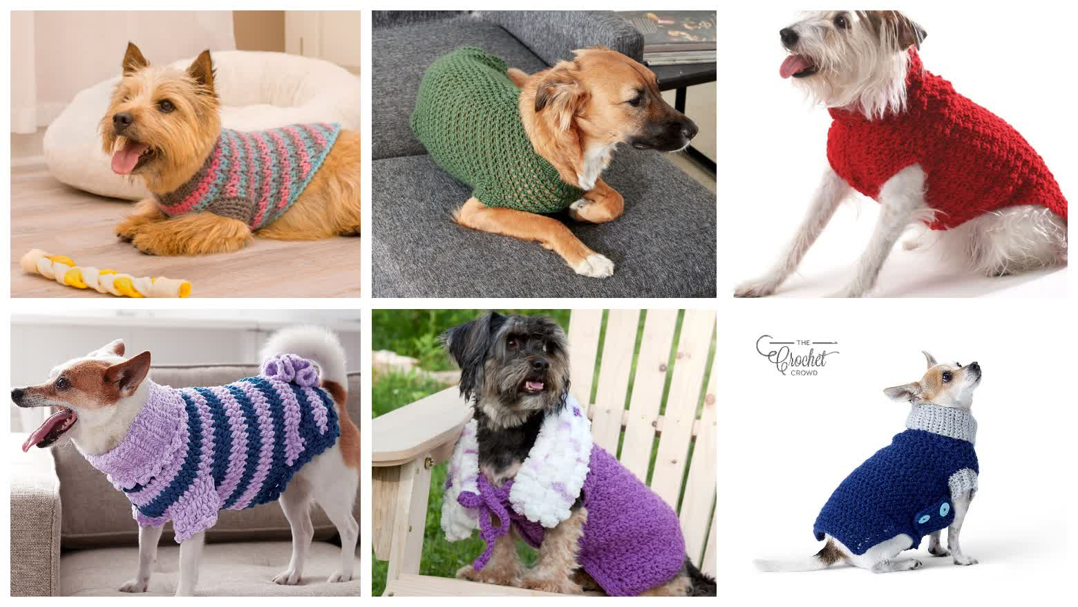 6 Cozy Crochet Dog Sweater Patterns