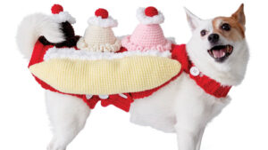 Crochet That's Bananas Dog Sweater