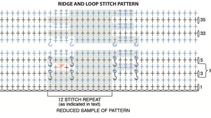 Ridge and Loop Week 1 B
