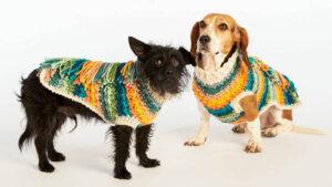 Crochet Happy Camper Dog Coat