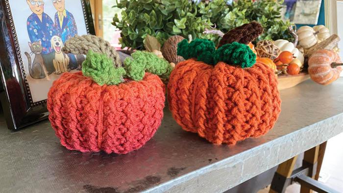 Table Pumpkin Patch Pumpkins