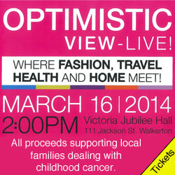 Optimistic View - Live Event